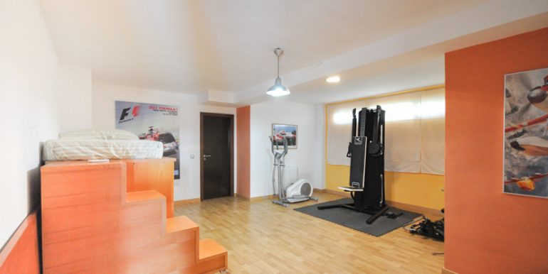 MON214CZN-Indoor gym
